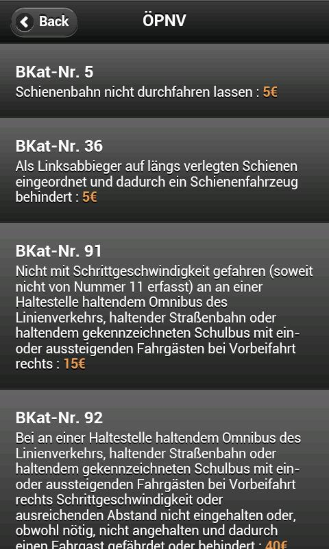 Bußgeldrechner / Katalog 2013 - screenshot