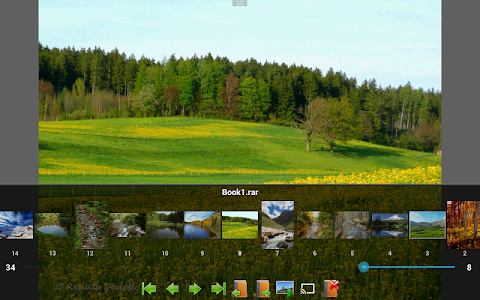 Perfect Viewer v2.5.4.2