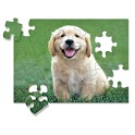 Random Jigsaws icon