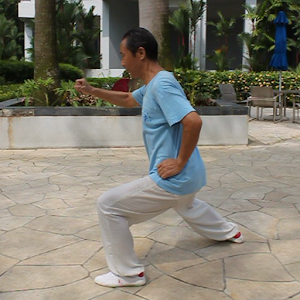 TaiChi42-1 四十二式太极拳-1 健康 App LOGO-硬是要APP