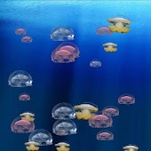 Live Wallpaper Jellyfish