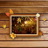 Free Frame Picture Theme