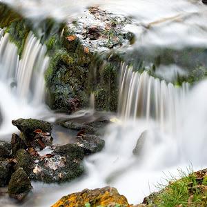 Willow River_041.jpg