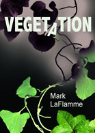 VegetationCover.jpg