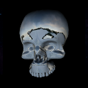 3D Moving Skull Live Wallpaper icon