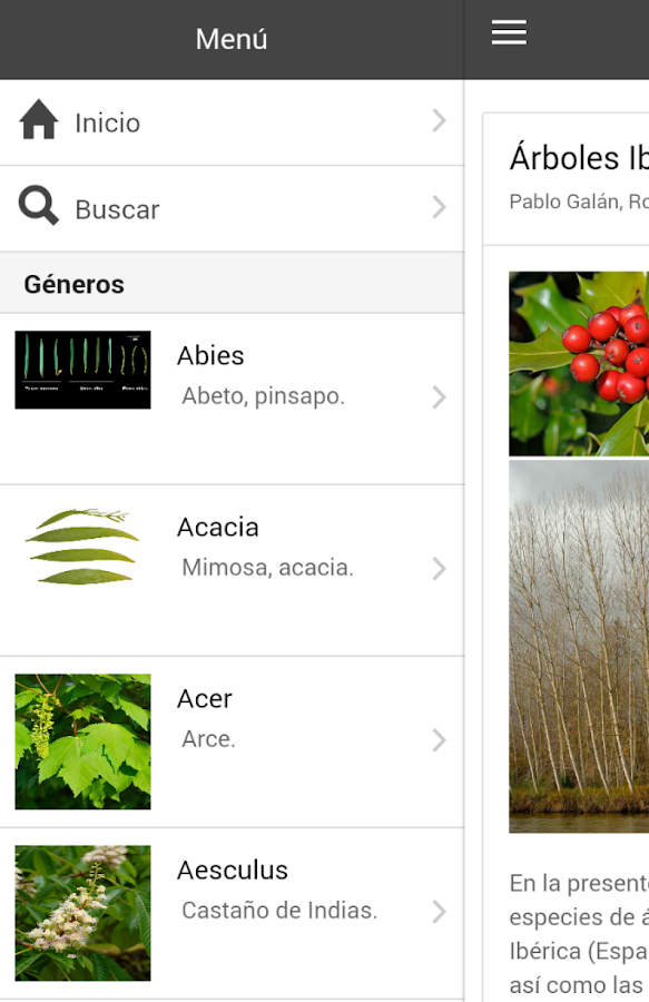 Árboles Ibéricos- screenshot