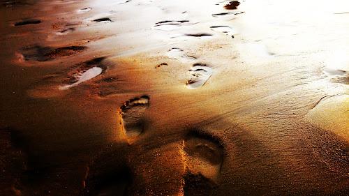 Footprints in the sunset by Alexandra Rafaila - Nature Up Close Sand ( water, holiday, sand, macro, sunset, summer, france, footprint, seaside, beach,  )
