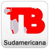 Copa Sudamericana 2013