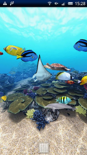 Tropical Fish Ocean 360°