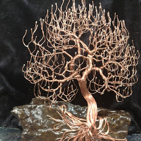 Tree on a rock with roots exposed by Brian Boyer - Abstract Macro ( wiretree, treeart, copper wire tree, trees, sculpted wire trees, wire tree sculpture )