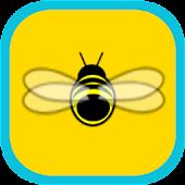Beenie the Bee