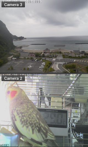 Viewer for iControl IP cameras