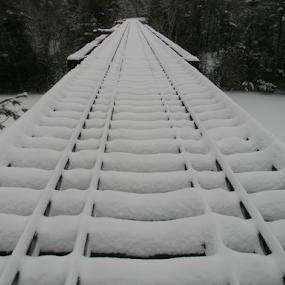 Snow Covered Rails by Jason Asselin - Buildings & Architecture Bridges & Suspended Structures ( winter, nature, snow, bridge, photography )