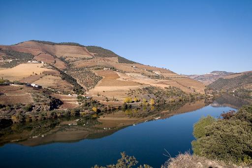 Douro More Than Wine