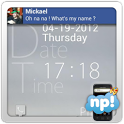 NP Facebook Theme icon