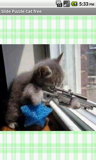 すこしかわった猫free