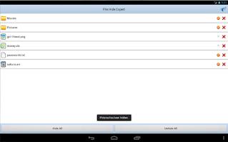 Screenshot of File Hide Expert