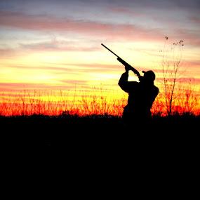 Sunset Hunter by Sherrie Erickson Dunford - Uncategorized All Uncategorized (  )