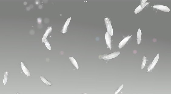 Feather Live Wallpaper Trial