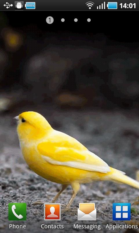 Yellow Bird - screenshot