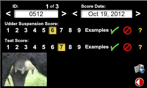 Udder & Teat Scoring Beef Cows - screenshot thumbnail