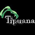 Download Tipuana Tipu APK