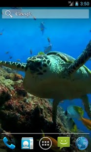 Sea Turtle. Live wallpaper. - screenshot thumbnail