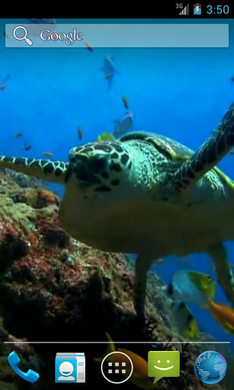 Sea Turtle. Live wallpaper. - screenshot