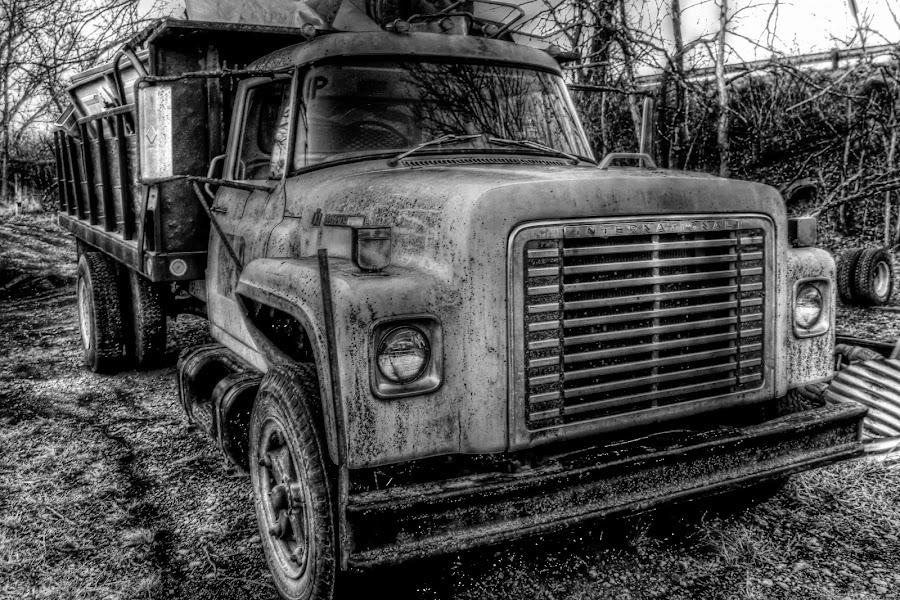 Muscles~ by Karen McKenzie McAdoo - Transportation Automobiles