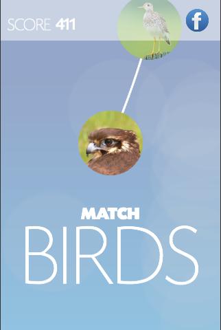 matchBIRDS