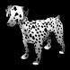 Dogs encyclopedia