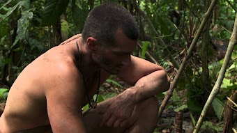 The Jungle Curse