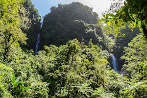 Two waterfalls tumble side by side on Dominica.