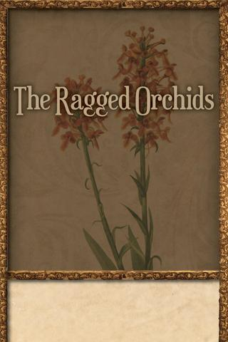 The Ragged Orchids - screenshot