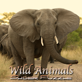 Wild Animals Slider Puzzle