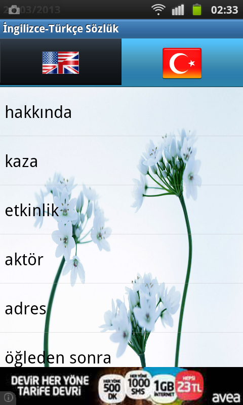 English Turkish Dictionary - screenshot