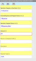 Screenshot of Agenda Income Expense