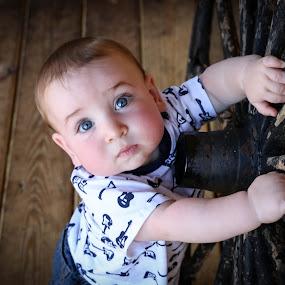 Wheels go Round and Round by Jared Lantzman - Babies & Children Babies ( wheel, carriage, blue eyes, round, trailor, baby, tractor, boy,  )