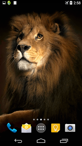 Lion 3D Live Wallpaper