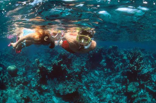 Snorkelers-US-Virgin-Islands - Snorkelers explore a reef in St. Thomas, US Virgin Islands.
