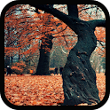 Galaxy S5 Autumn LiveWallpaper icon