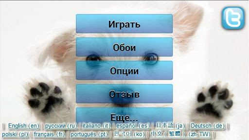 Small Dogs Puzzle Wallpapers
