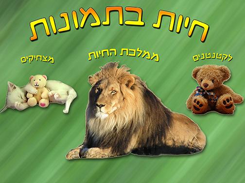חיות בתמונות - עולם החי לילדים