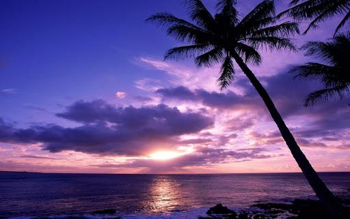 sunrises HD