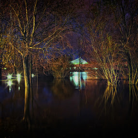 Floods in the Mondego by José Sobral - Nature Up Close Water ( flodds, coimbra, park, green, river, long, exposure, daytime, edition, challenge )