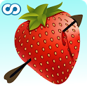 Fruit Archery icon