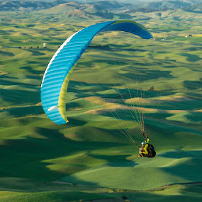 Flying over the Palouse.  by George Herbert - Landscapes Mountains & Hills