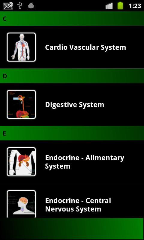 Human anatomy (... Gbfax