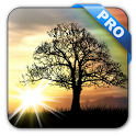Sun Rise Pro Live Wallpaper icon