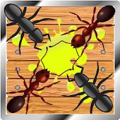 ANT SMASHER INFINITE